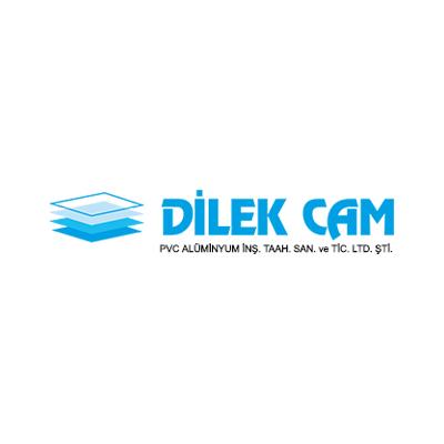 Dilek Cam